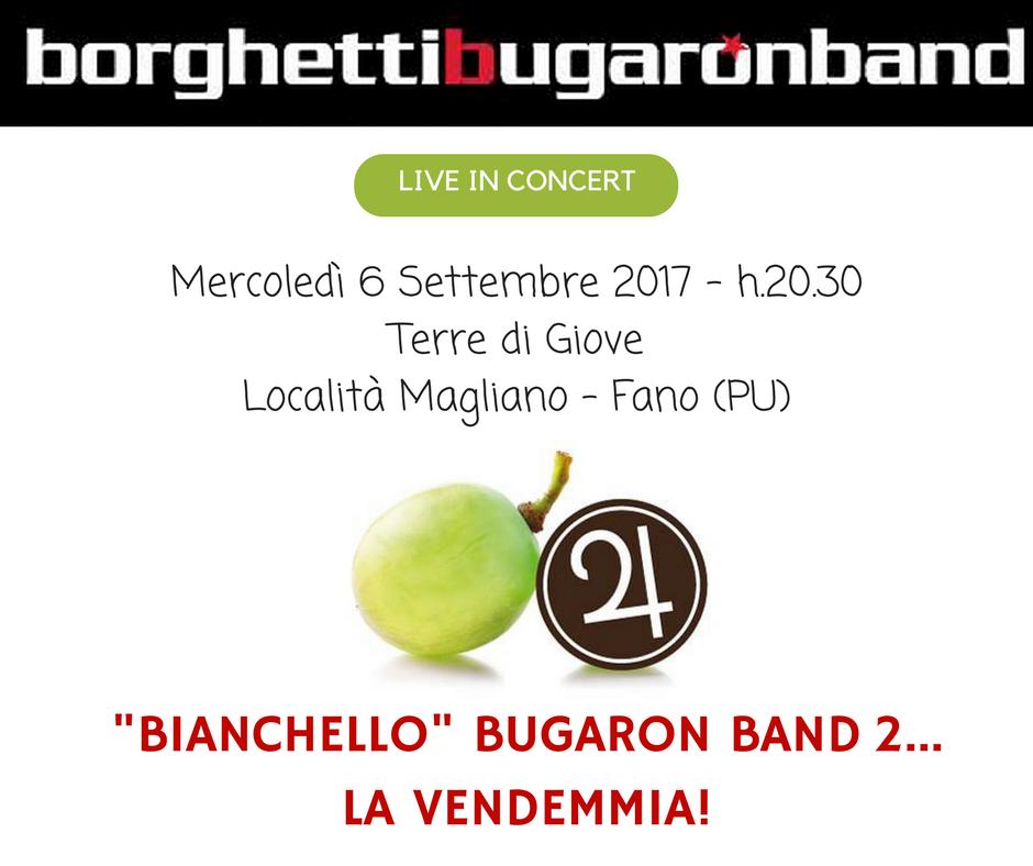 Bianchello Bugaron Band 2: la vendemmia